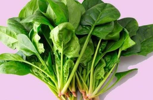 菠菜跟豆腐能一起吃_菠菜和豆腐能一起吃吗_豆腐跟菠菜能一起吃_淘宝助理